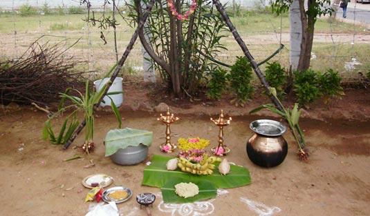 Village Pongal